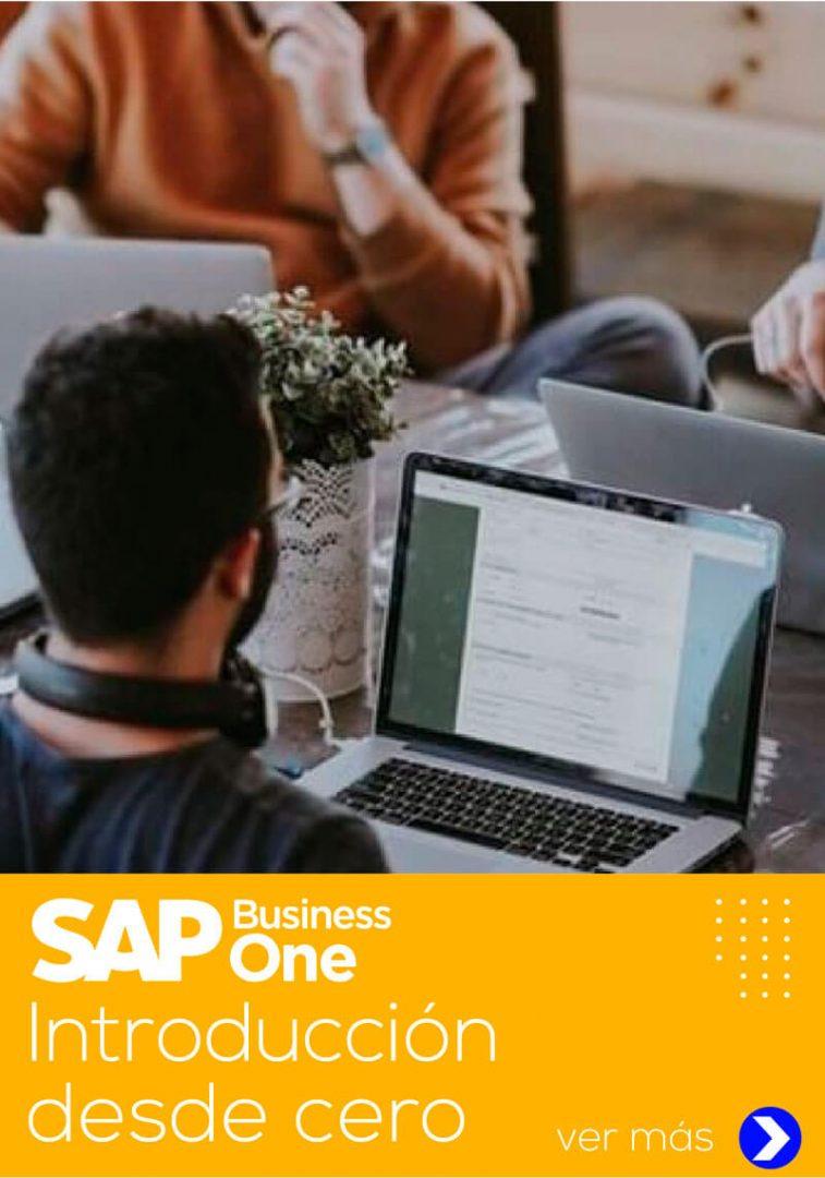 curso de sap business one introducción desde cero