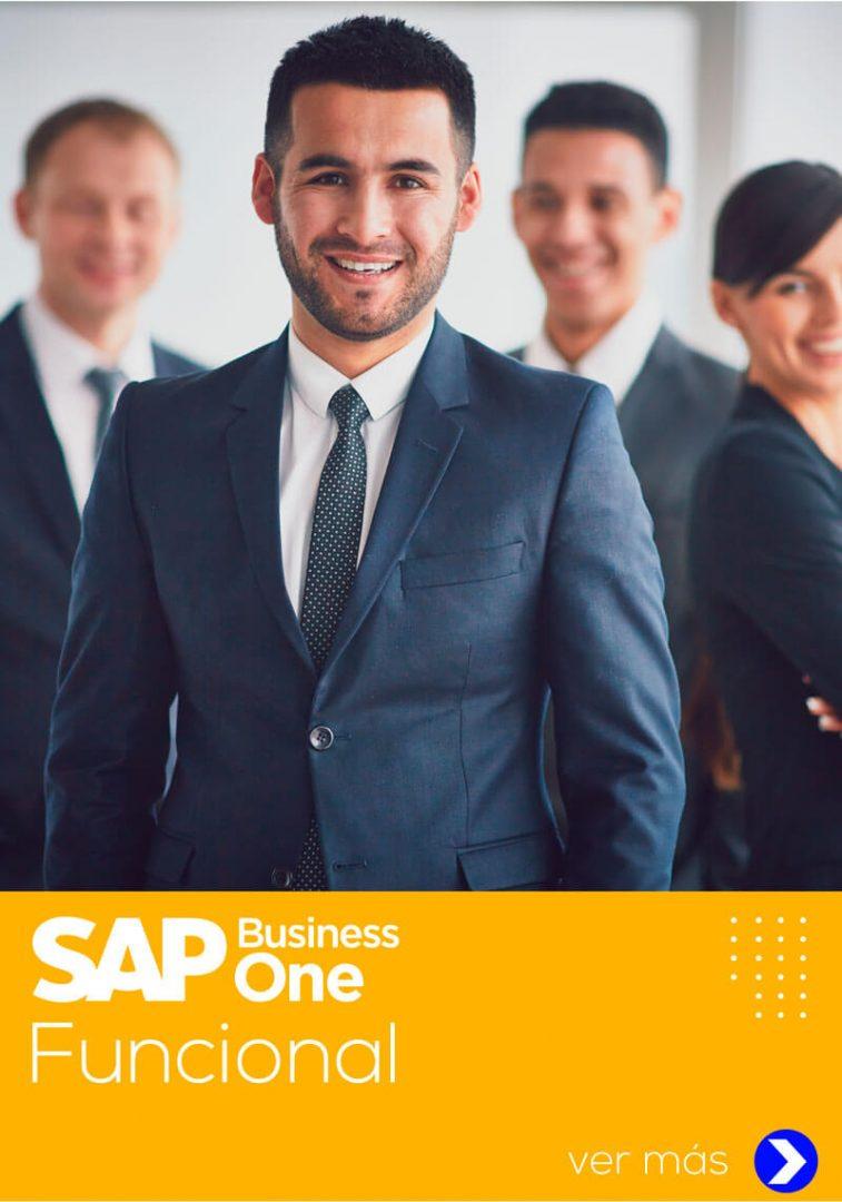 curso de sap business one funcional