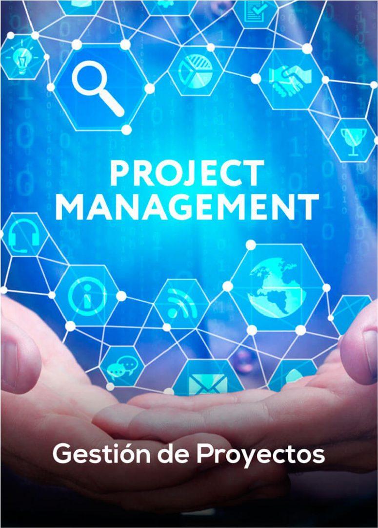 categoría gestión de proyectos