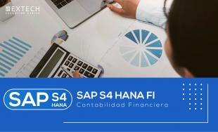 SAP S/4 HANA FI