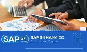 SAP S/4 HANA CO