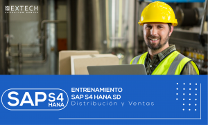 Entrenamiento SAP S4 HANA SD
