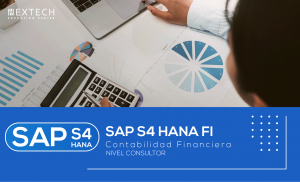 SAP S4 HANA FI NIVEL CONSULTOR
